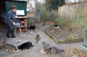 L'amour  pour  les chats c'est son engagement