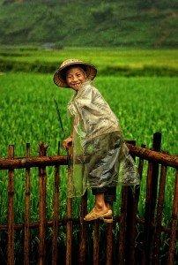 enfant du monde Vietnam560222_909887742384057_2410248909894105418_n